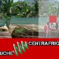 Bruche Spiruline Centrafrique