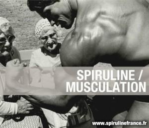Comment utiliser la spiruline pour la musculation ?