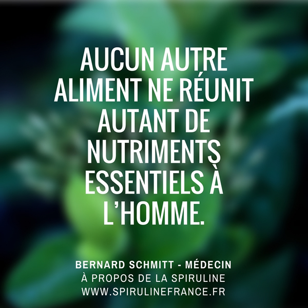 Citation de Bernard Schmitt