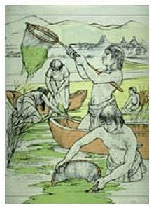 Aztèques cultivent la spiruline