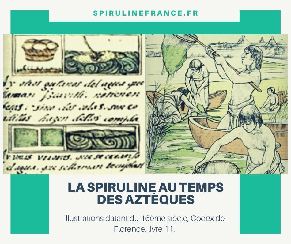 illustration de culture de la spiruline par les Aztèques